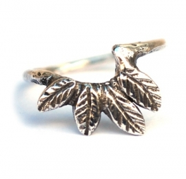 Ornamental silver ring