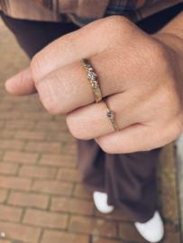 Fijne Naoki ring met salt & pepper diamant