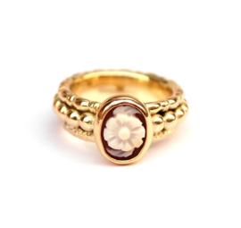 Ring voor Lotte
