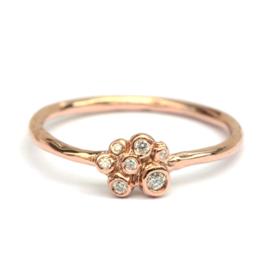 Ring Scarlet