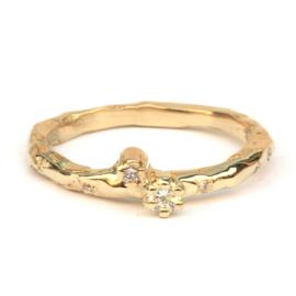 Erfgoud ring