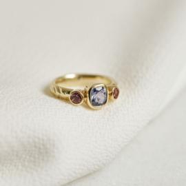 Ring met tanzaniet en toermalijn