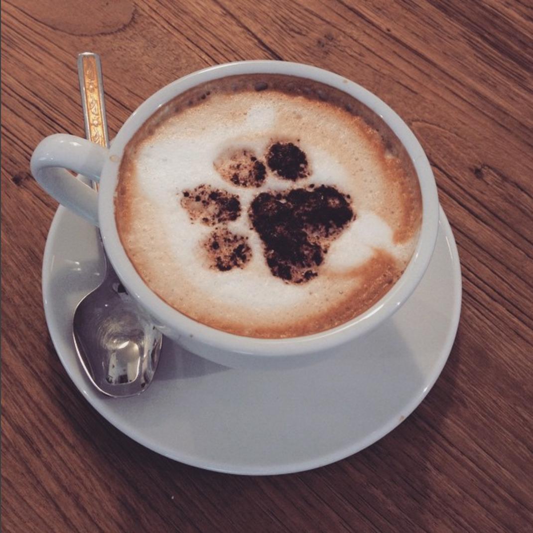 Coffee & Jewels