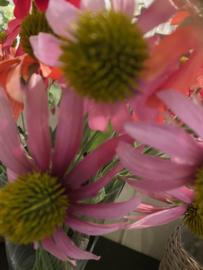 Zonnehoedjes roze
