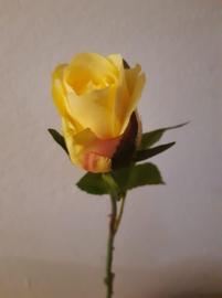 Baby roos geel 40cm.