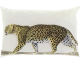 Kussen Leopard 40x60
