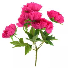 Bos Pioenen hard roze 45cm.