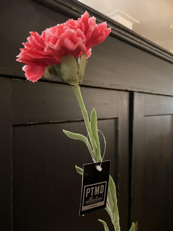 PTMD Anjer cherise rood 60cm.