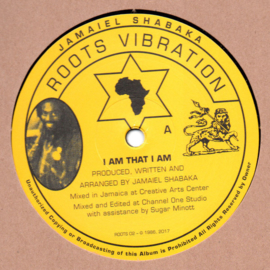 Jamaiel Shabaka ‎- I Am That I Am 12""