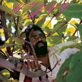 Junior Byles - Rasta No Pickpocket LP (US import)
