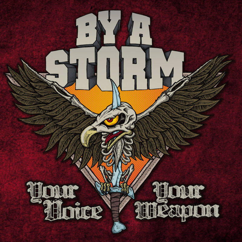 By A Storm - Your Voice Your Weapon LP