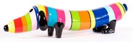 Hotdog rainbow van Niloc Pagen
