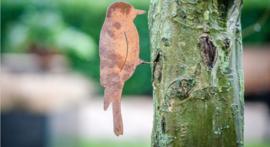 Schroefvogel Ecoroest