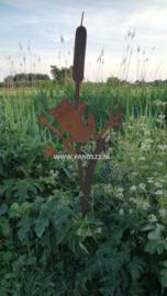 Tuinsteker kikker op lisdodde