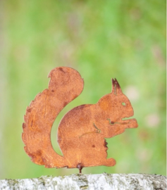 Schroefeekhoorn zittend Ecoroest