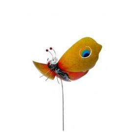 Medusa tuinsteker vlinder geel/oranje