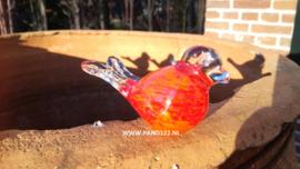 Glasvogeltje oranje/rood