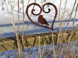 Krullend hart met vogeltje