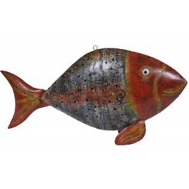 Medusa Vis -L- rood