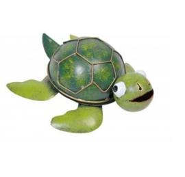 Medusa schildpad