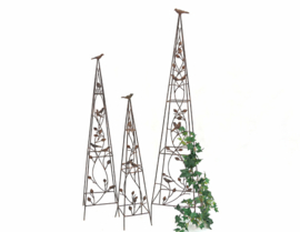 Plantenklimrek piramidevorm set van 3