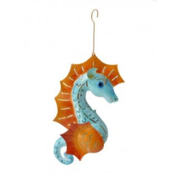 Medusa zeepaardje