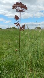 Tuinsteker Wilde wortel