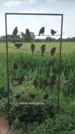Tuinscherm open met vogels