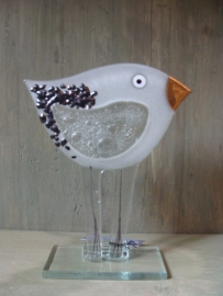 Vogel wit met gouden snavel