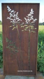 Tuinscherm met graspluimen