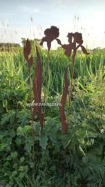 Tuinsteker set Irissen