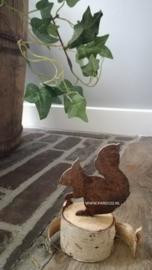 Kleine zittende eekhoorn