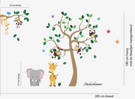 Muursticker boom Jungle tree