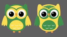 Little owl muursticker uilen Geel  - mid groen
