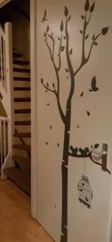 Stijlvolle boom met vogelkooi