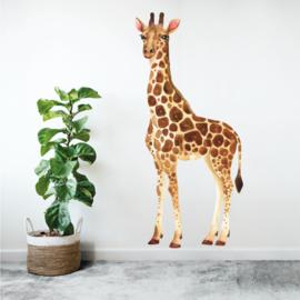 Muursticker giraffe afrika