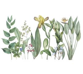 Muursticker decoratieve planten sierlijk groen