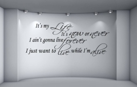Bon Jovi - It's my life, It's now or never, I ain't gonna live forever, I just wanna live while i'm alive. Muursticker / Interieursticker