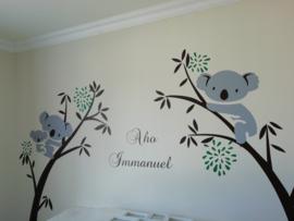 Muursticker bomen met koala's