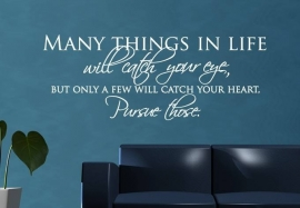 Many things in life will catch your eye, but only few will catch your heart. Pursue those.