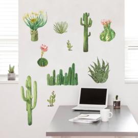 Muursticker cactus plant  groen