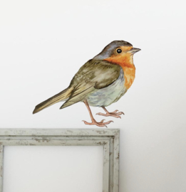 Muursticker vogel roodborst
