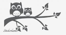 Muursticker uilen op tak