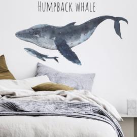Muursticker walvis Bultrug