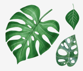 Muursticker palmbladen groen decoratie planten
