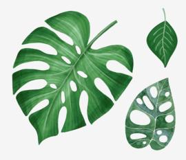 Muursticker tropisch palmbladen groene decoratie planten