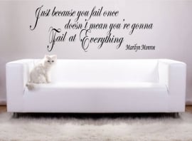 Marilyn Monroe - Just because you fail once, does'nt mean you're gonna fail at everything