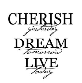 Cherish yesterday dream tomorrow live today
