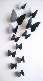 Kleurrijke 3D vlinders zwart