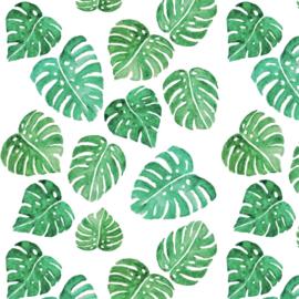Behang - monstera palm bladen motief / patroon
